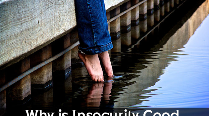 Why is Insecurity good?